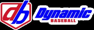 dyynamic baseball logo